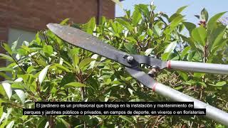 Jardinero y Jardinera – Florista